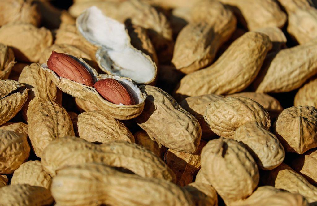 Jordnötter i skal